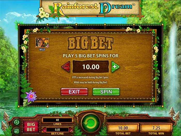Rainforest Dream Slot