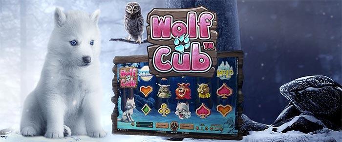 Wolf Cub Slot Betsafe Casino