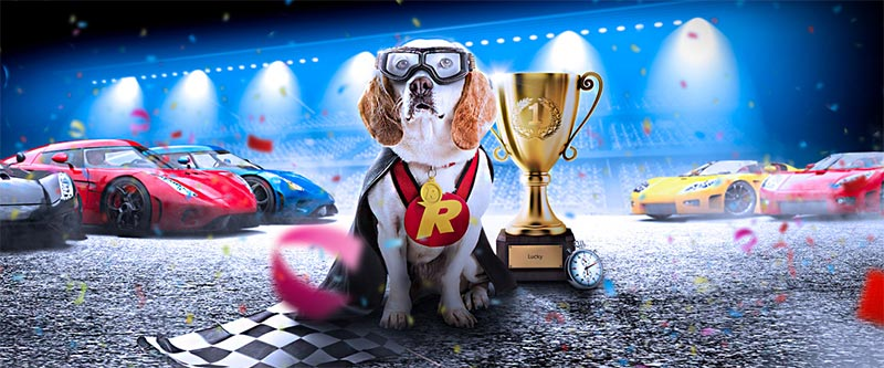 Rizk Casino Races Header