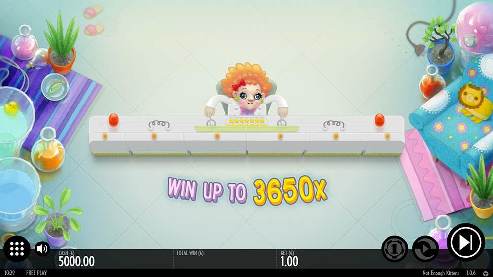 Not Enough Kittens Slot - Intro Screen