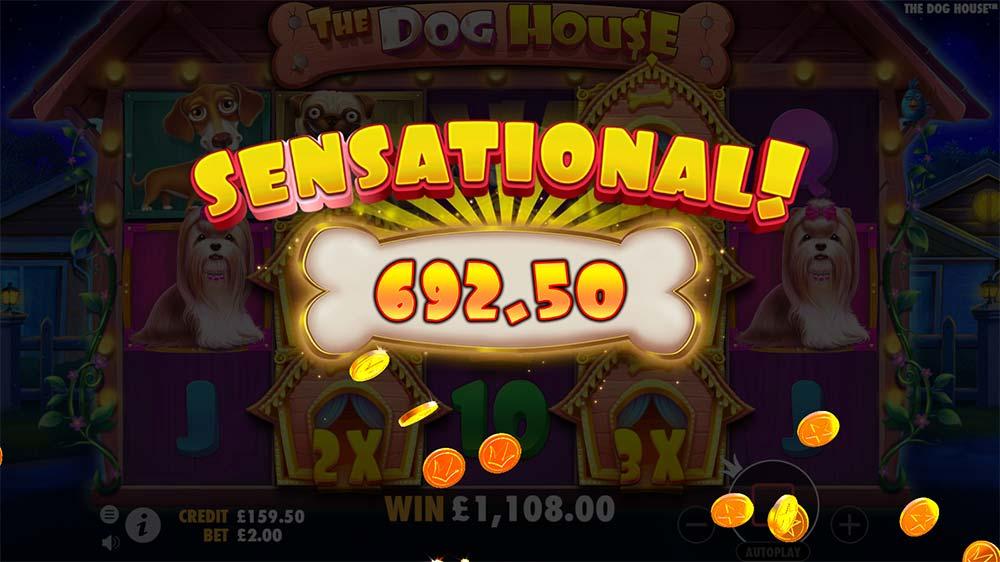 The Dog House Slot - Sensational Win