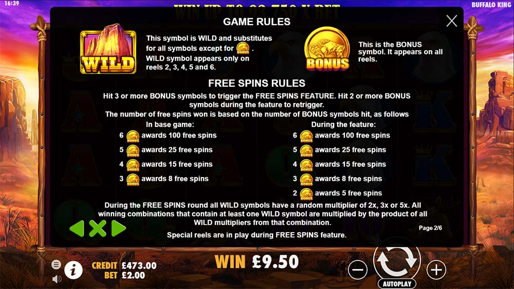 Buffalo King Slot - Game Rules