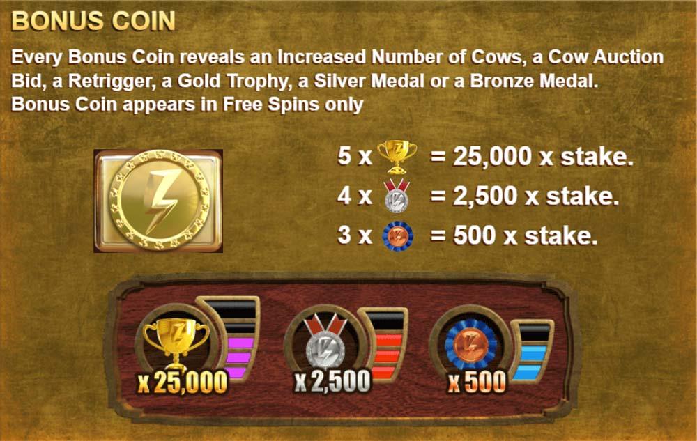 Beef Lightning Megaways Bonus Coins Feature